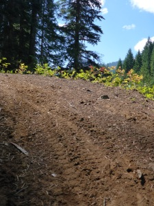 Get to know your loam in the Casades